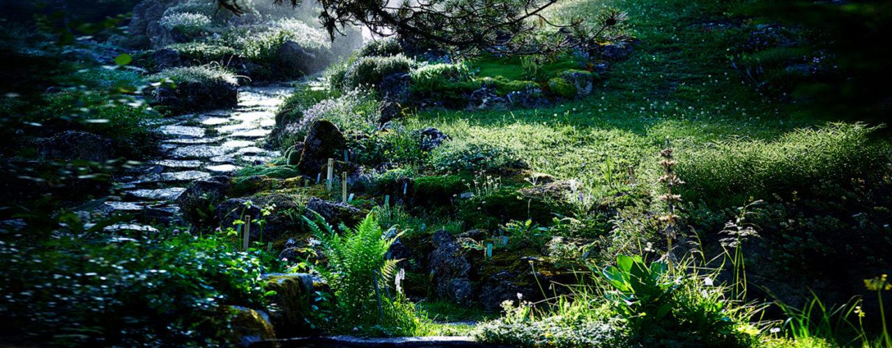 jardin.mysterieux-v5-aspect-ratio-1280-500